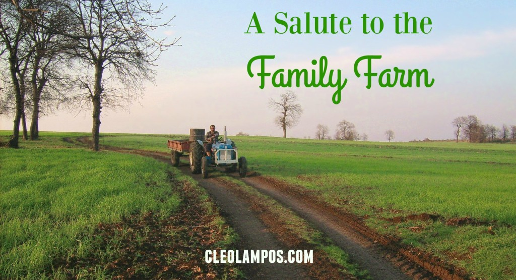 salute to the family farm tractor-in-field-1377109